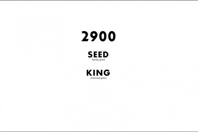 2900-Series